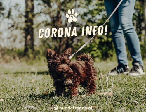 Corona Info 20.05.2021